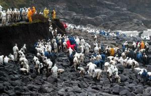 Marea de voluntarios haciendo frente a la marea de chapapote, con la ausencia de las instituciones gobernadas por el PP.