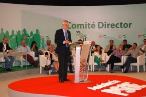 Griñán en el Comité Director del PSOE-A, 02.07.2013, del que nada se debatió sobre el ilegal Reglamento de Primarias que aprobó