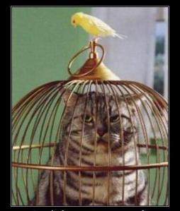¿Había gato encerrado en la presentación de Planas?
