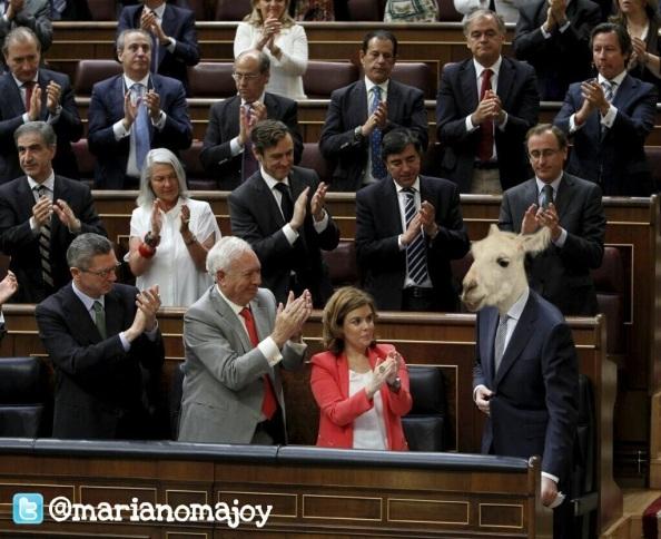 rajoy cabra