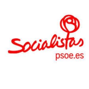 Logo de la Conferencia PSOE 2013
