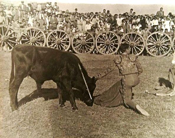 toros novena estación 1947