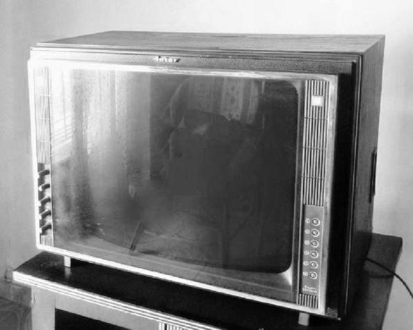 El televisoe INTER de la misma marca que adquirió el marido de María la del Televisor