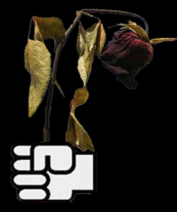 El puño y la rosa marchita, por mor de su suicidio destructivo