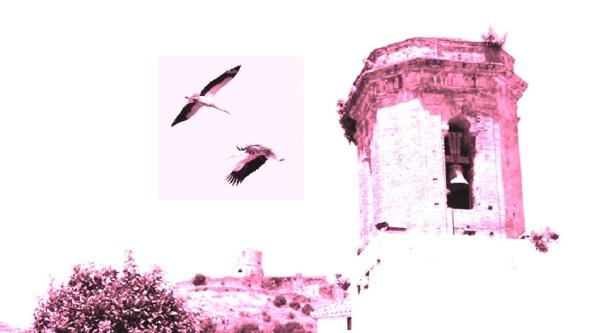 El Paseo de Jimena. Dos cigüeñas volando El Campanario de lo suq fue la iglesia de Nuestra Señora Coronada. Imagen propia.
